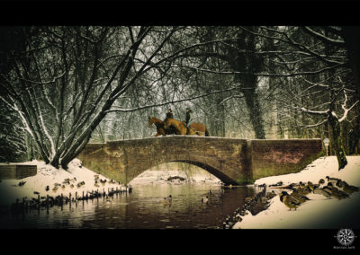 Stadtpark-mit-Pferden